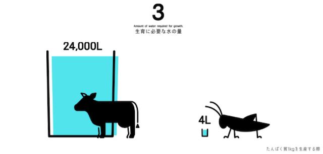 牛とコオロギ育成に必要な水の量比較