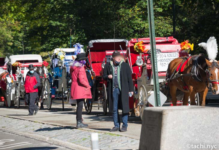2020年11月4日 セントラルパークで観光客を待つ馬車 [Photo by Hideyuki Tatebayashi ] Do not use images without permission.
