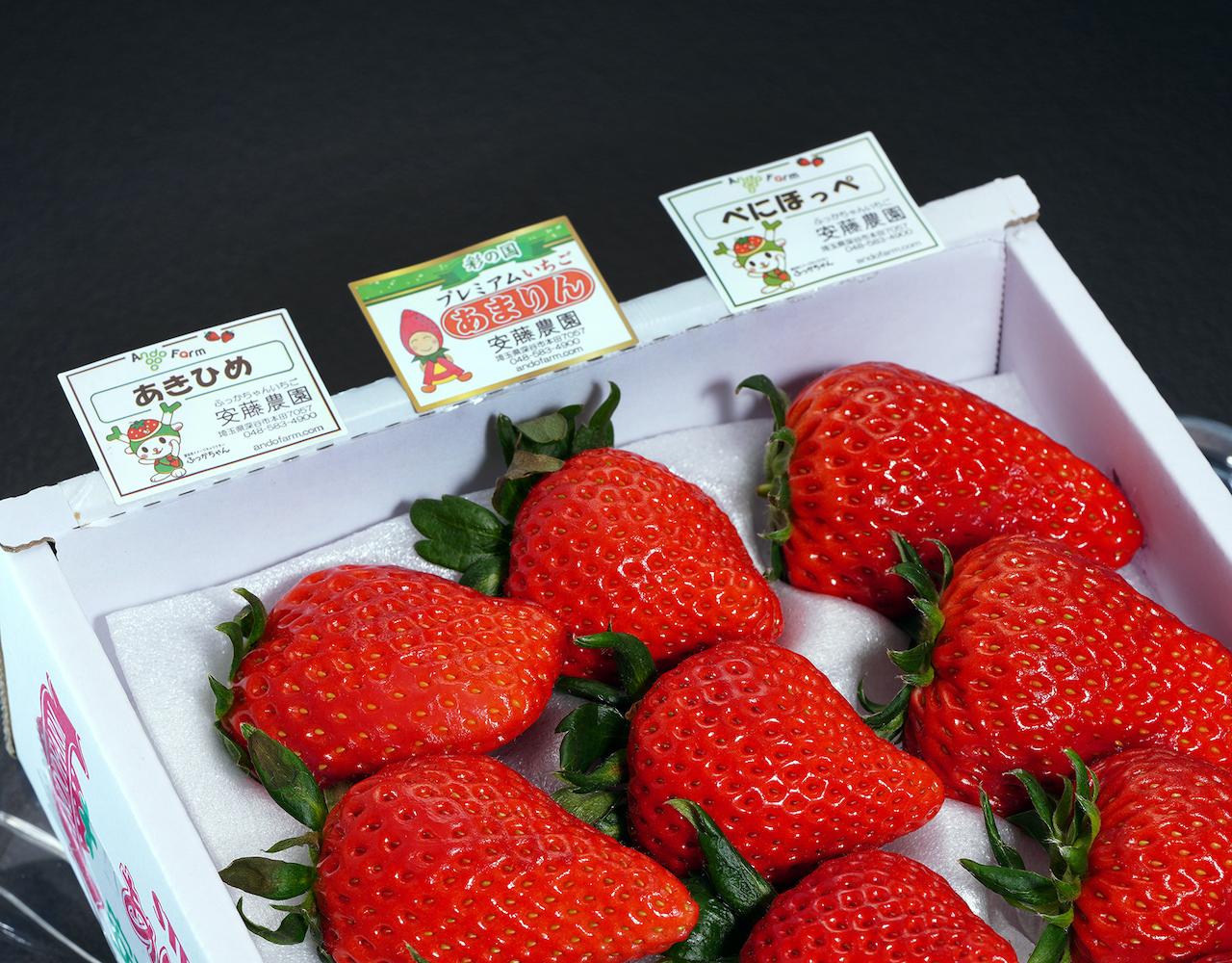 埼玉県 安藤農園の市場流通が難しい完熟いちご3種セット